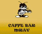 mrav (1)